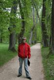 Аллея А.П.Керн в Тригорском. Скоро возможно будет закрыта из-за старости деревьев, они грозят свалиться кому-нибудь на голову.