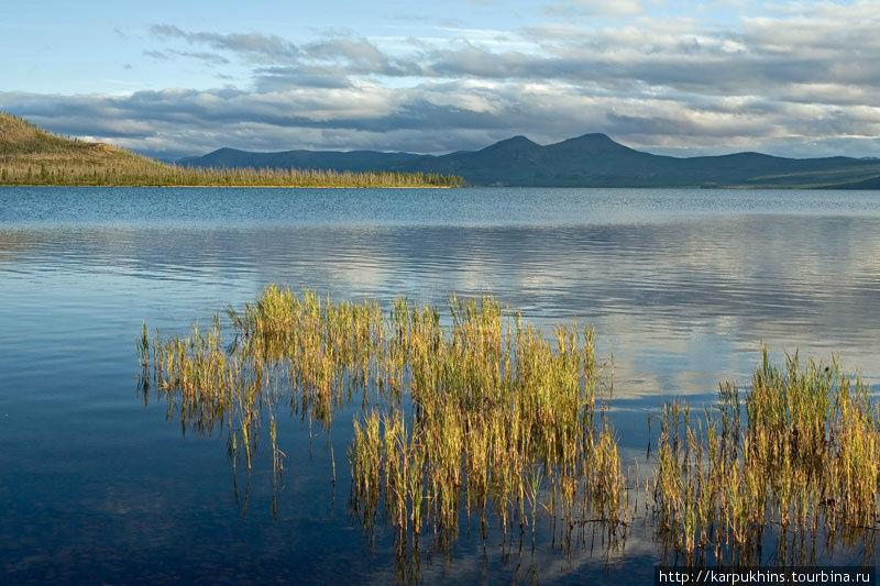 Этот залив, в северной части озера, был одной из основных точек съёмки.