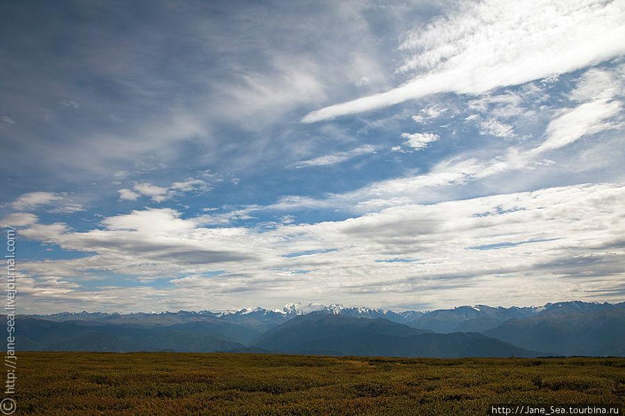 Вид на Белуху и Катунский хребет с Тургундинского плато Тюнгур, Россия