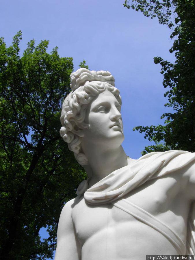 Фрагмент статуи Апполона