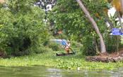 Мужчина пробирается по каналу сквозь бурно заросшие водоросли