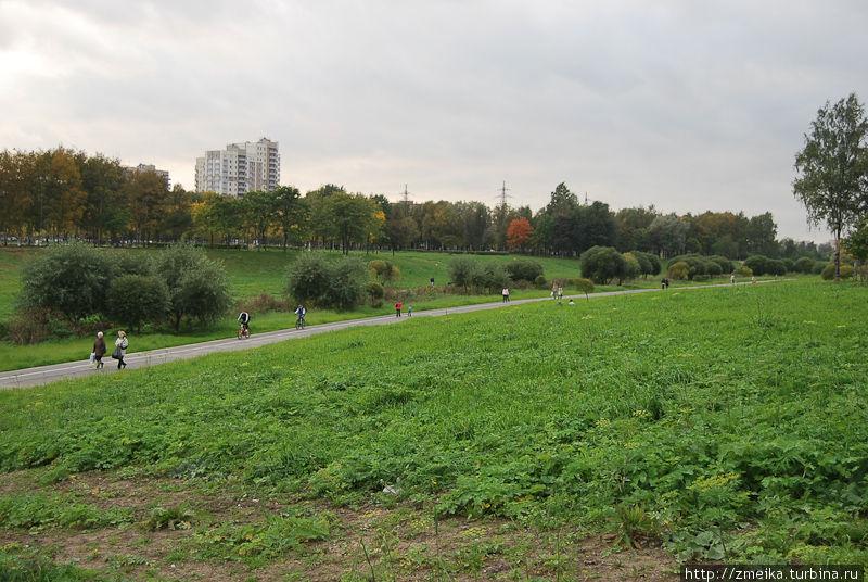 Велосипедная дорожка, вдали дома на Северном пр.
