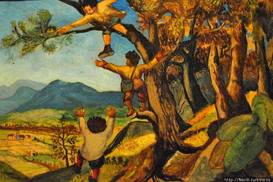 1893, я часто пропускал школу, чтобы идти в горы искать гнезда птиц