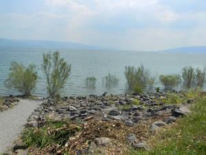 Берег озера совсем близко — в нескольких метрах от входа. Здесь паломники, или посетители могут омыть ноги в воде галилейского моря (Кинерет).