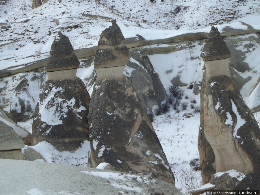 Долина Пашабаг зимой