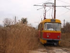 Камышовый трамвай подходит к Усатову.