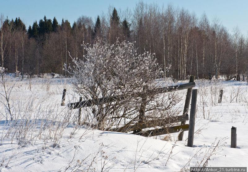 В Чудиново за чудесами Чудиново, Россия