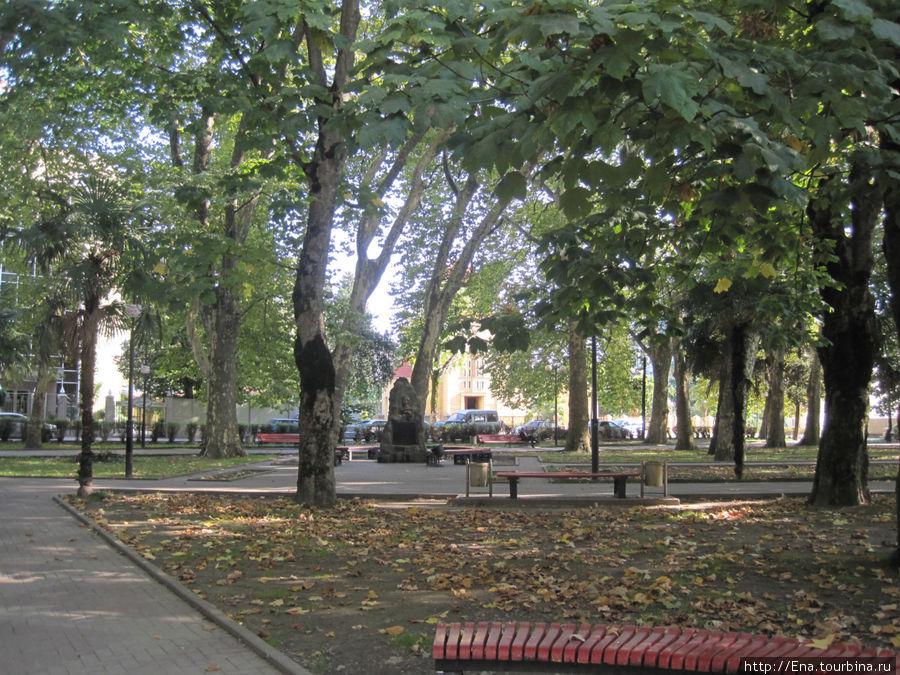 Тенистый парк Бестужева с обелиском революционера и лавочками