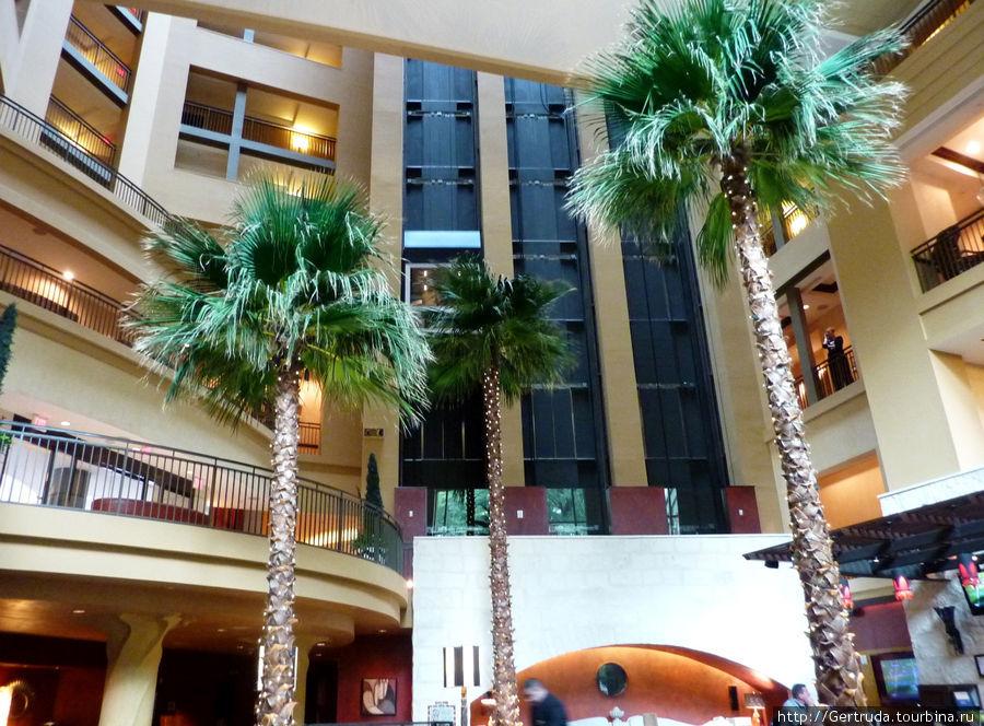 Внутри  отеля — лифты, пальмы в холле первого этажа