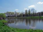 Местный пруд, называется Лисичка