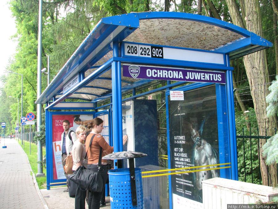 Остановка автобусов с номерами рейсов