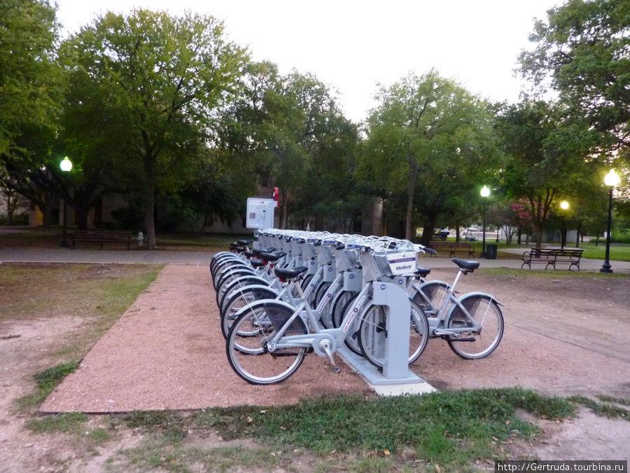 Стоянка велосипедов  — пункт проката