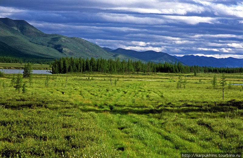 Долина Сунтара. Вездеходная дорога. На всём протяжении маршрута нет никаких населённых пунктов и люди нигде не живут. Но выше по долине Сунтара оленеводы пасут оленей. К этим пастбищам и ведёт дорога.