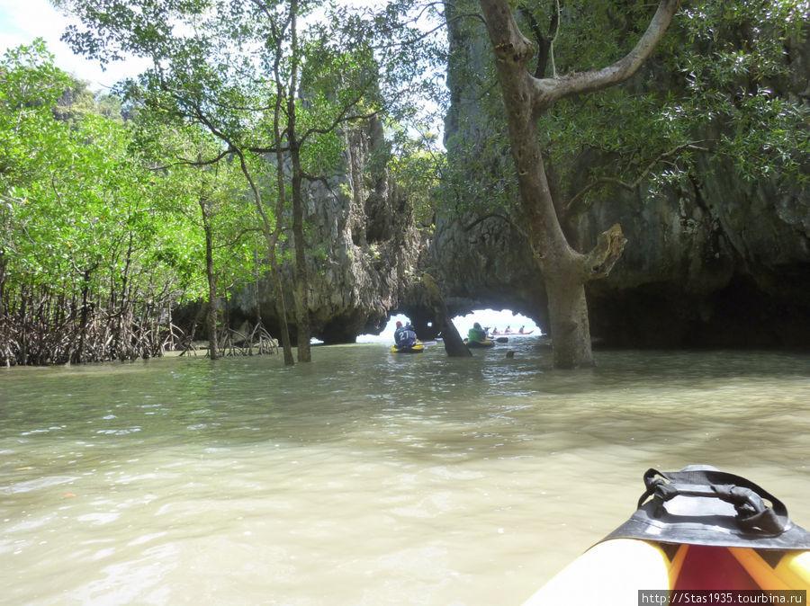 Южный Таиланд. Андаманское море. Мангры во внутренних лагунах острова Хонг.