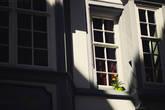 Старый центр, как и в любом другом Швейцарском городе, заботливо ухожен. Чистые улочки, цветочки везде, разноцветные домики и разукрашенные стены.