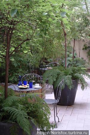 зимний сад в холле отеля