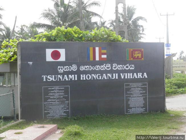 Sri Lanka(23). Беда – она не национальна, а интернациональна Галле, Шри-Ланка