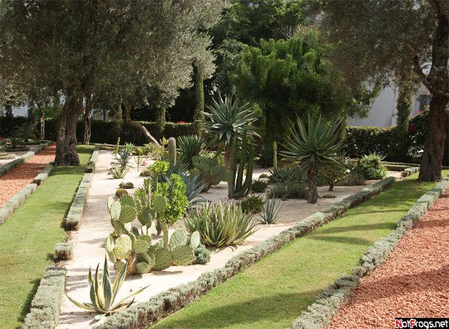 В этой части садов нам в основном попадались кактусы...