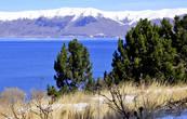 На озере чистый воздух. На берегу озера растёт искусственный лес (сосна, широколиственные породы и облепиха).
