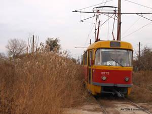 Камышовый трамвай подходит к конечной остановке в селе Усатово.