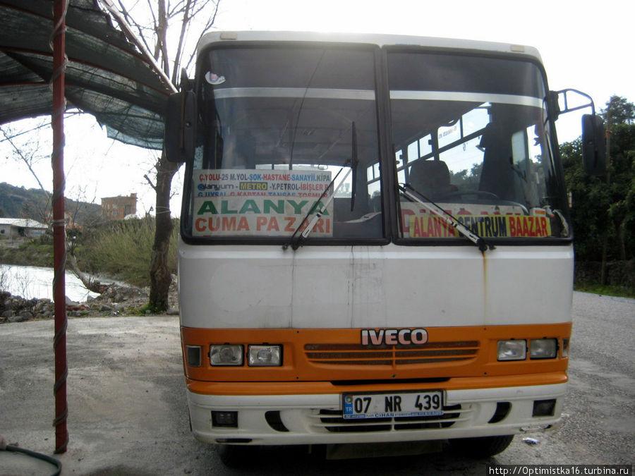 На таком автобусе можно доехать до ресторана