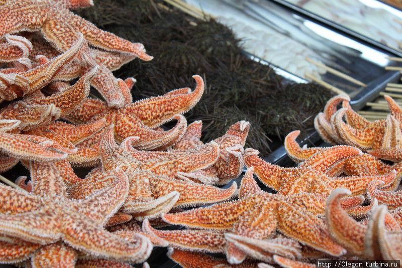 Морские звёзды тоже съедобны Пекин, Китай