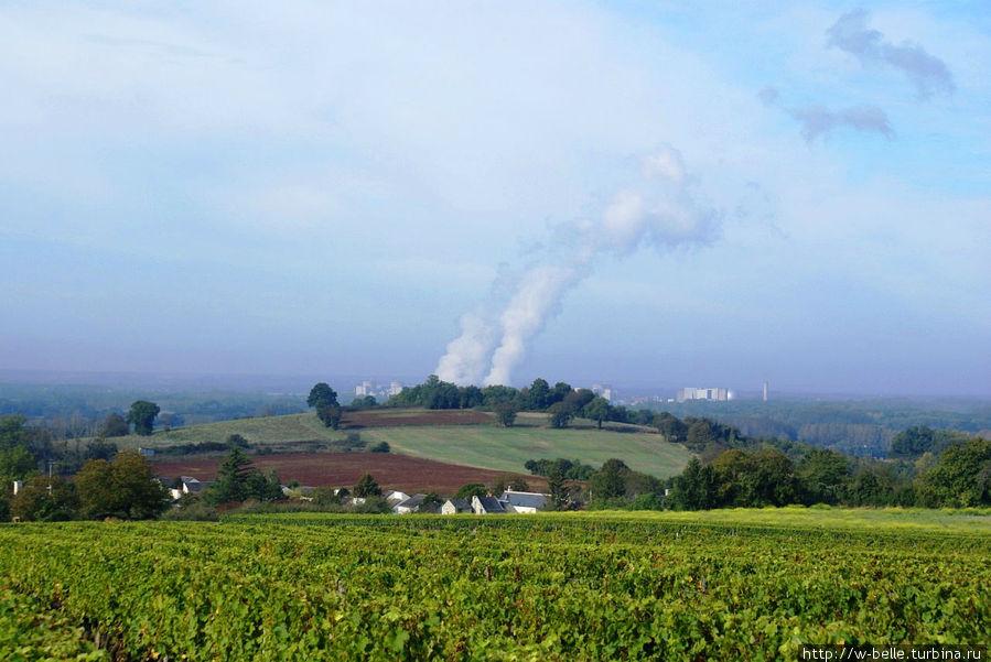 Живописные окрестности: вид на долину с виноградниками.
