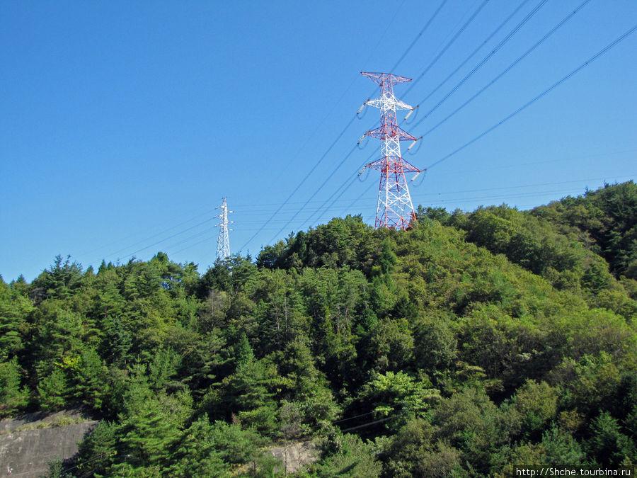 А это снимок с моста, но не имеющий отношения к мосту. Просто меня немного раздражает в Японии факт, что практически нет мест нетронутой природы, где не видно линий электропередач, особенно невдалеке от городов...