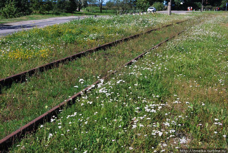 Остатки железной дороги у перрона