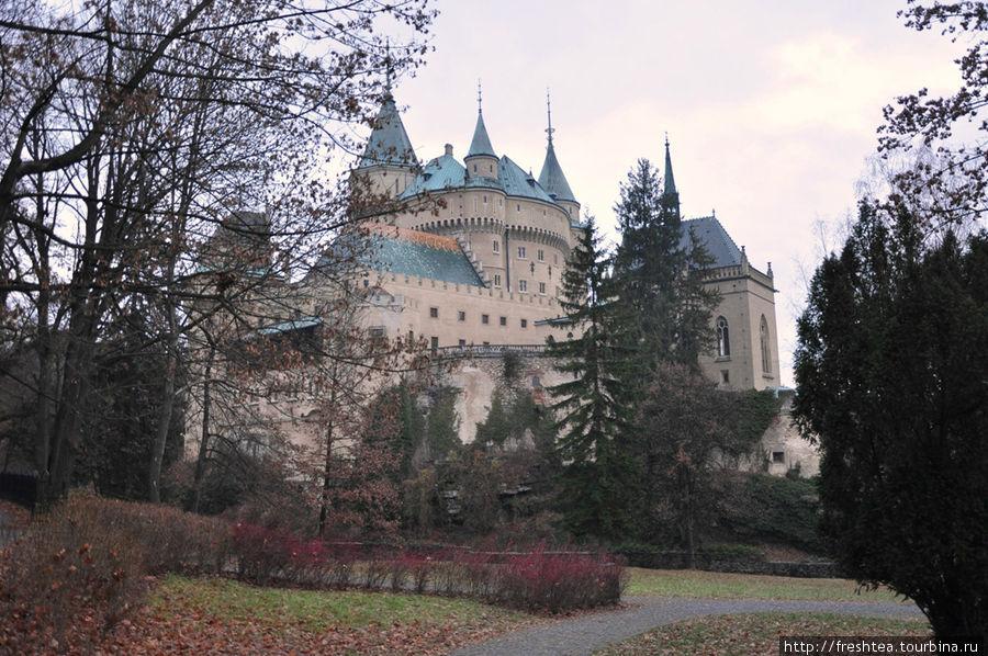 Летом и осенью замок в Бойнице в окружении векового парка куда живописней, чем в начале бесснежного декабря 2011.
