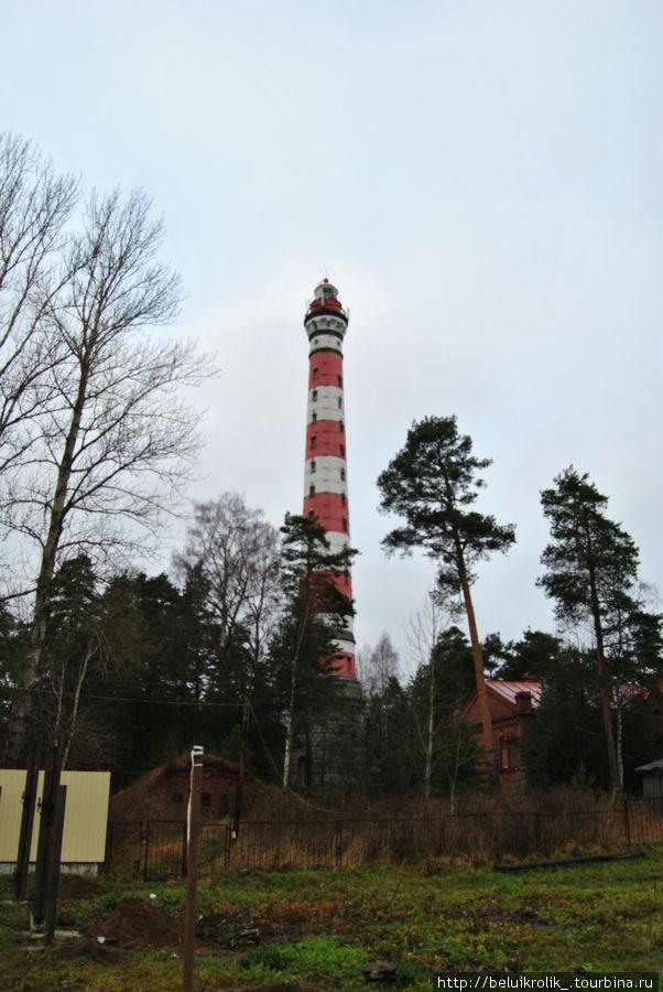 Осиновецкий маяк со службами