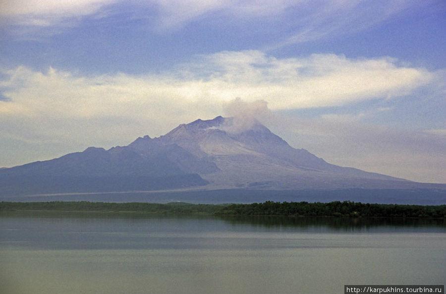 Вид на Шивелуч с озера Куражечное.