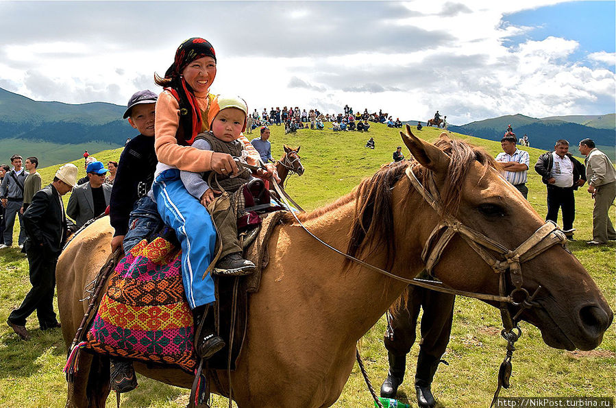 Казахская лошадь (