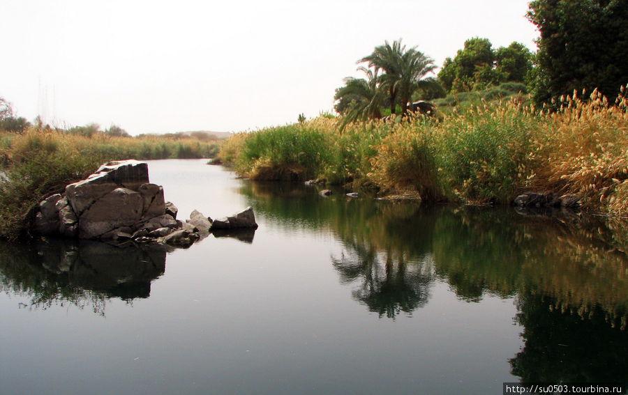 Тишина на Ниле