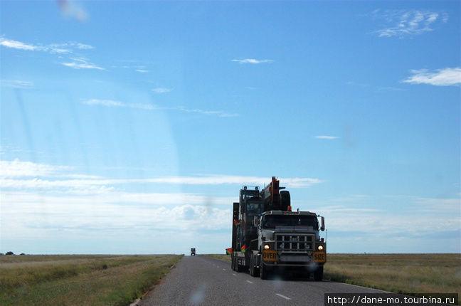 Колонна военных грузовико