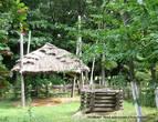 Во дворе находились хозяйственное постройки, приспособление для сушки сена, колодец-журавль. Усадьба обнесена забором-плетнем.