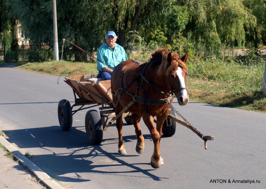 Основной транспорт Млынива.