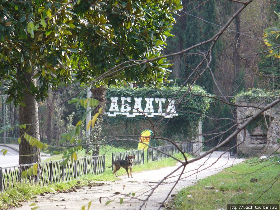 Территория крепости Абаата