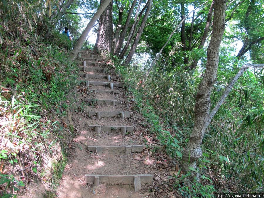 Идём на гору пешком.. Госэ, Япония