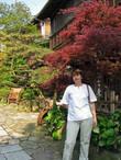 Красные японские момидзи, некоторые красные уже весной