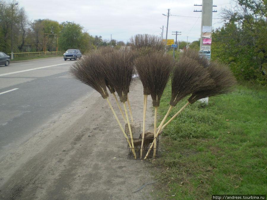 У дороги под Луганском