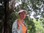 Экскурсовод Катя рассказывает нам о рожковом дереве. Уже потом я прочитала о нём интересный материал у Ирины http://turbina.ru/authors/iralda/travels/view/119309/advices/6/look/66400/