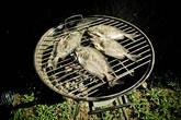 рыбное барбекю