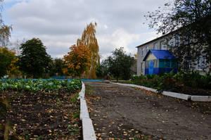 Школа со своим огородом