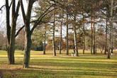 Просторный парк, что заложили на Курортном острове в 30-е годы прошлого века, в лучах декабрьского солнца.
