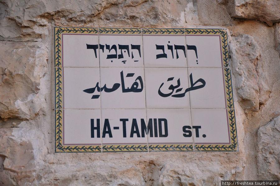 По традиции, названия улиц в Старом городе — на 3-х языках: иврит, арабский, английский. Название этой улицы, что ведет от Храмовой горы в Еврейский квартал, — А-Тамид. И оно достойно особого внимания, ведь Тамид на иврите — 'Вечность'. Улица Вечности, Вечная улица...  У слова 'Тамид' есть и сакральное значение: так называли таинство жертвоприношения Богу, которое первосвященники исполняли в Храме.