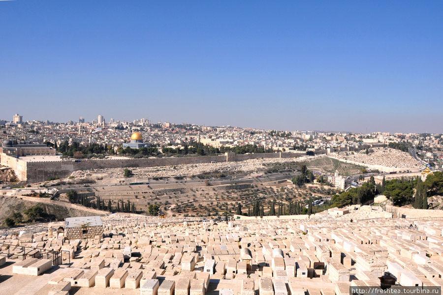 Вид на Старый город и древнейшее еврейское кладбище на склонах Масличной горы.  Ее от Старого города отделяет участок Кедронского ущелья, что в иудаизме известен как долина Иосафат. Согласно пророчествам, сюда