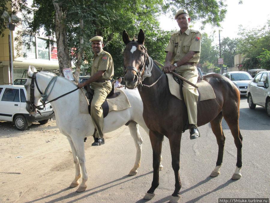 Джайпурская полиция на страже!