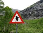 Дорожный знак не описан стандартами, но достаточно красноречив