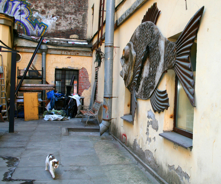 Кот, охраняющий рыбу